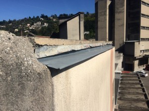 Réfection d'une toiture à Vienne